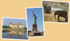 Startseite Urlaubstagebücher Bild09 - Schloss Moritzburg, Freiheitsstatue New York, Elefanten Etosha-Nationalpark