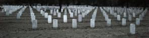 Nationalfriedhof Arlington: der Nationalfriedhof Arlington National Cemetery ist mit über 260.000 Beigesetzten der zweitgrößte Friedhof der USA