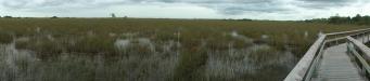 Pa-hay-okee Trail: auf dem Steg des Pa-hay-okee Trail kommen wir trockenen Fußes durch die unter Wasser stehenden Graslandschaften des Everglades Nationalpark