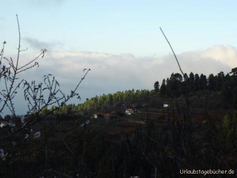 Oberhalb von Puntagorda : Oberhalb von Puntagorda