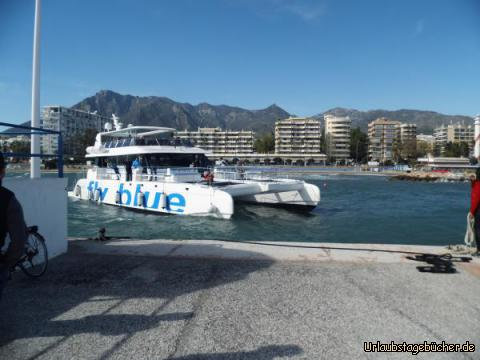 Katamaran zwischen Puerto Banus und Marbella: Katamaran zwischen Puerto Banus und Marbella