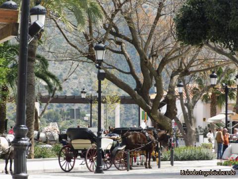 Eseltaxis in Mijas : Eseltaxis in Mijas