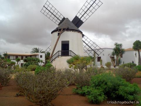 Mühle bei Tiscamanita: Mühle bei Tiscamanita
