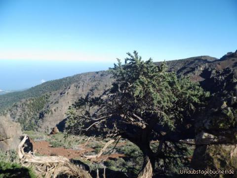 Abfahrt vom Roque de los Muchachos: Abfahrt vom Roque de los Muchachos