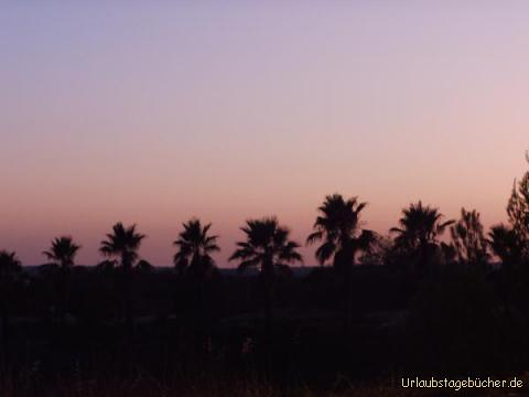 Sonnenuntergang in Castro Marim: Sonnenuntergang in Castro Marim