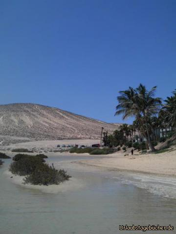 Paradies Playa de Sotavento: Paradies Playa de Sotavento