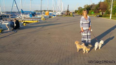 Stettin Hafen: Campingplatz Marina in Stettin