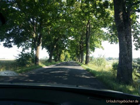 Straße zum Ziel: Straße zum Ziel