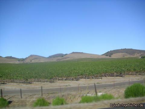 Santa Ynez Valley: wir fahren (gar nicht so weit von Michael Jacksons Neverland-Ranch entfernt) durch das stark vom Weinanbau geprägte Santa Ynez Valley