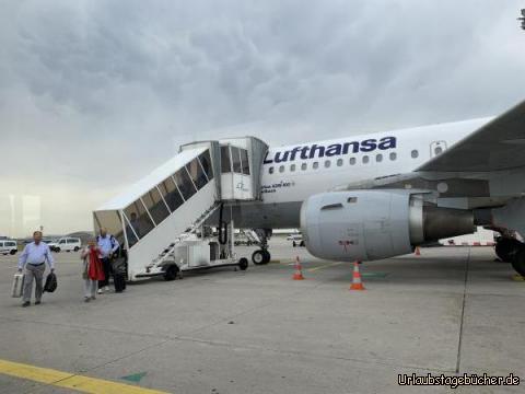 Lufthansa :